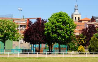 Benavides de Órbigo, desde la zona deportiva
