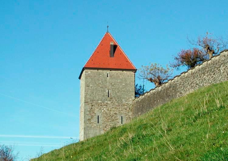 torre salvaje romont