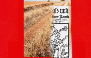 La Guía de Hermann Künig conduce por itinerarios alternativos bellos y fáciles de recorrer